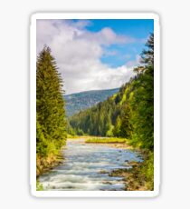 Rapid mountain river in valley Sticker