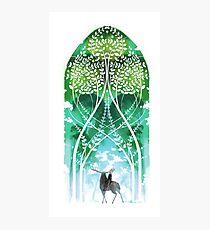 DA:I-The Emerald Graves Photographic Print