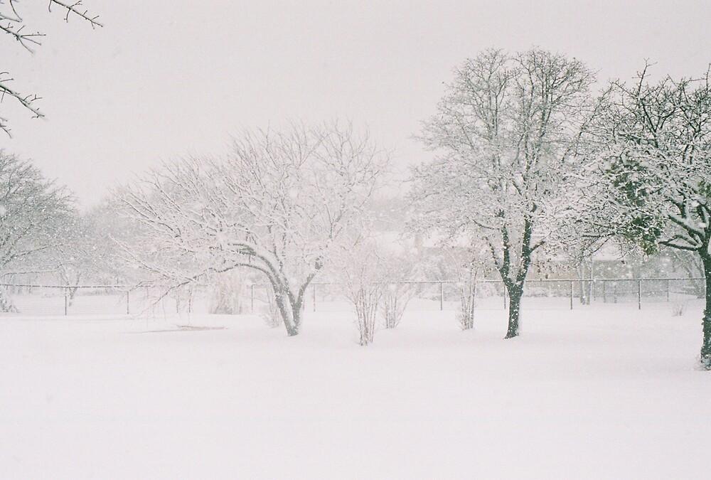 winter wonderland by anticlowns21