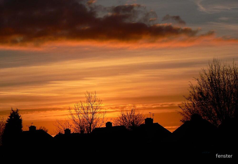 December Sky by fenster