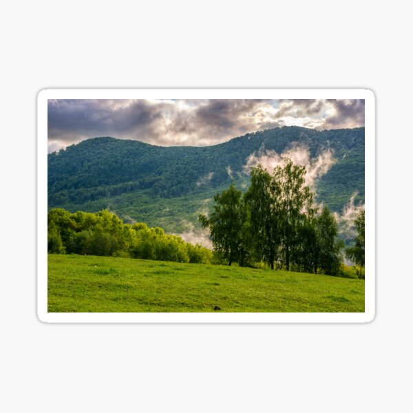 foggy mountain ridge over the forest in springtime Sticker