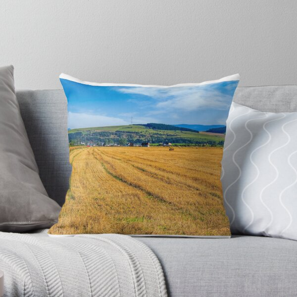 agricultural field in mountains Throw Pillow