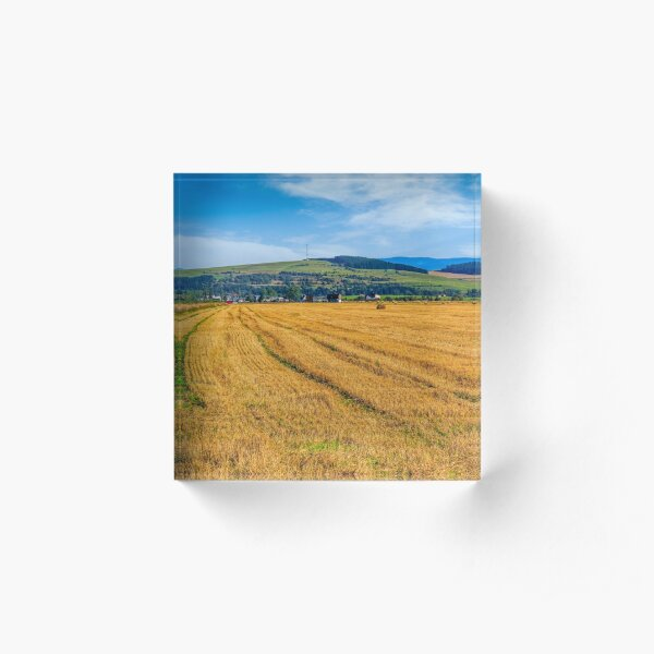 agricultural field in mountains Acrylic Block