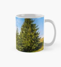 pine forest in summer landscape Classic Mug