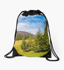 pine forest in summer landscape Drawstring Bag