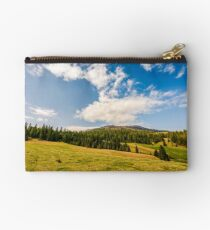 pine forest in summer landscape Studio Pouch
