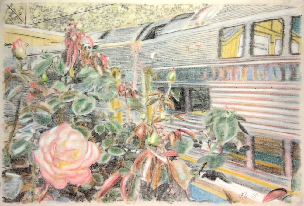 Woodford roses and the 4:50 from Central by Peter Brandt