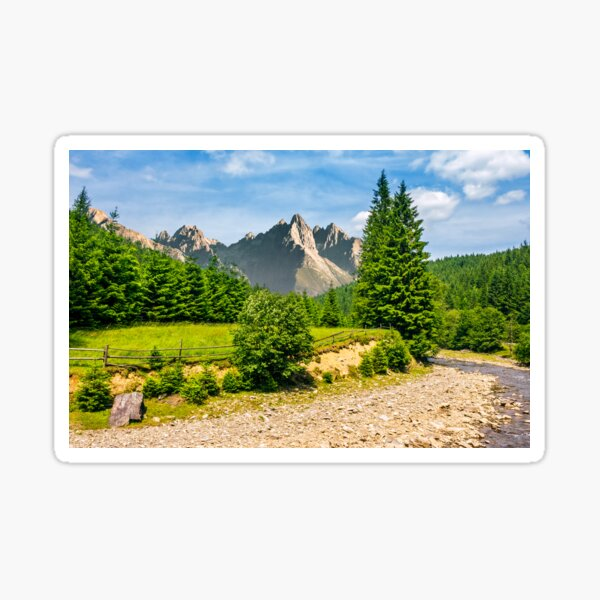 trees near the river in mountains Sticker