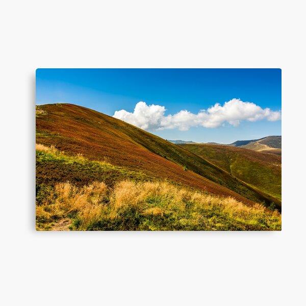 mountain hillsides in late summer Canvas Print