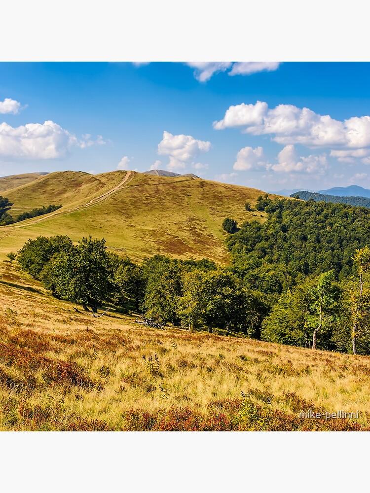 Carpathian Mountain Range in late summer by mike-pellinni