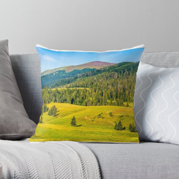 spruce forest in springtime landscape Throw Pillow