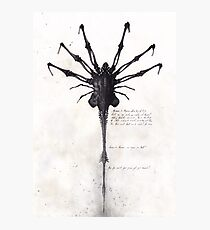 Alien - Facehugger Photographic Print
