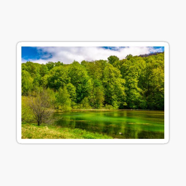 mountain lake among the forest Sticker