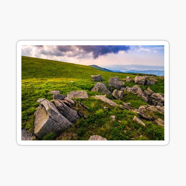 Dandelions among the rocks in Carpathian Alps Sticker