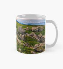 Dandelions among the rocks in Carpathian Alps Mug