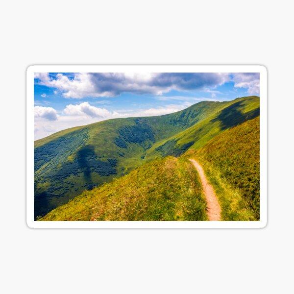 path through a meadow on hillside Sticker