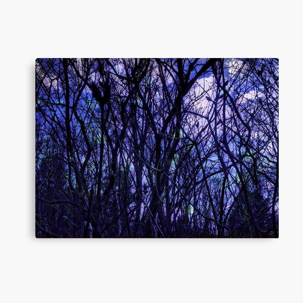 Dark Purple Forest - Purple Blue and Black Bare Tree Landscape Canvas Print