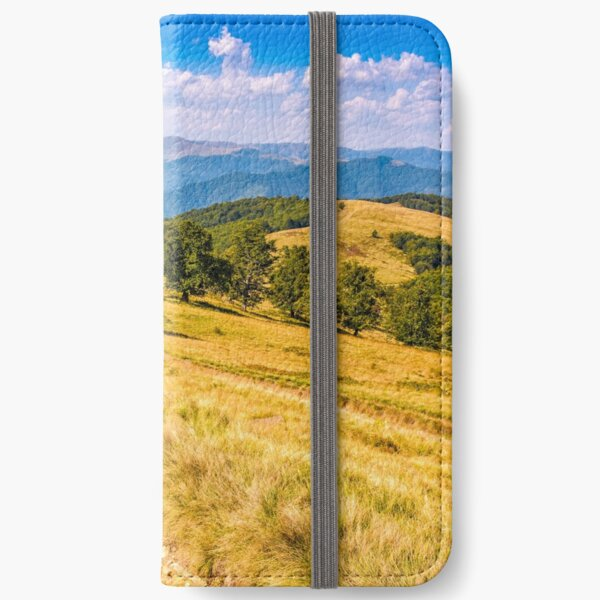 Countryside road in mountains at sunset iPhone Wallet