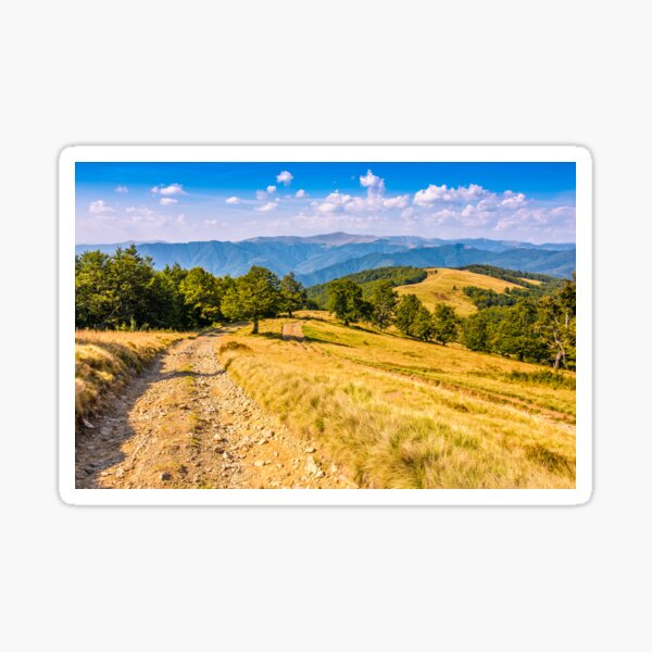 Countryside road in mountains at sunset Sticker
