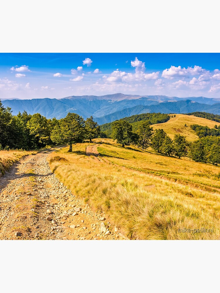 Countryside road in mountains at sunset by mike-pellinni