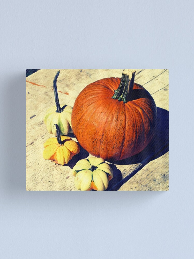 Alternate view of Gift for Food Blogger - Pumpkin and Squash Art - Kitchen and Dining Decor Canvas Print