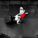Red Bag by Paul Finnegan