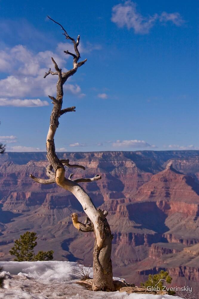 Grand Canyon 2 by Gleb Zverinskiy