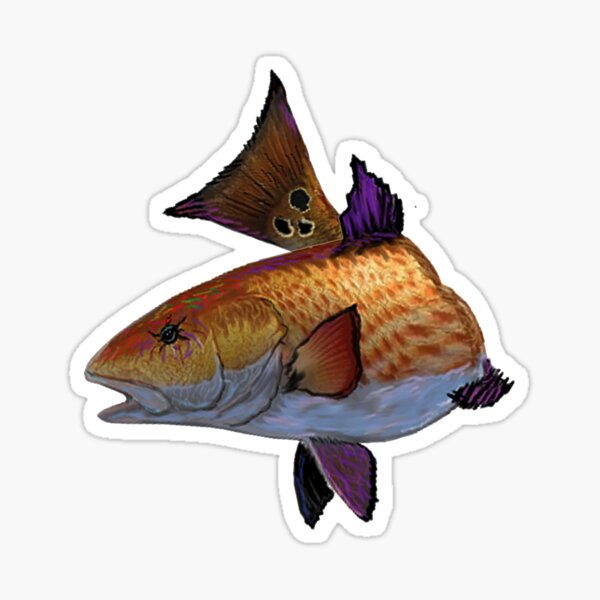 Catch of the Day Sticker