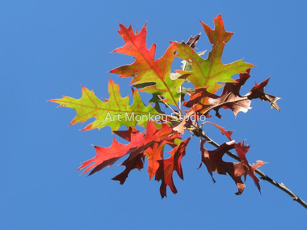 Autumn Leaves 1 by Dan Perez