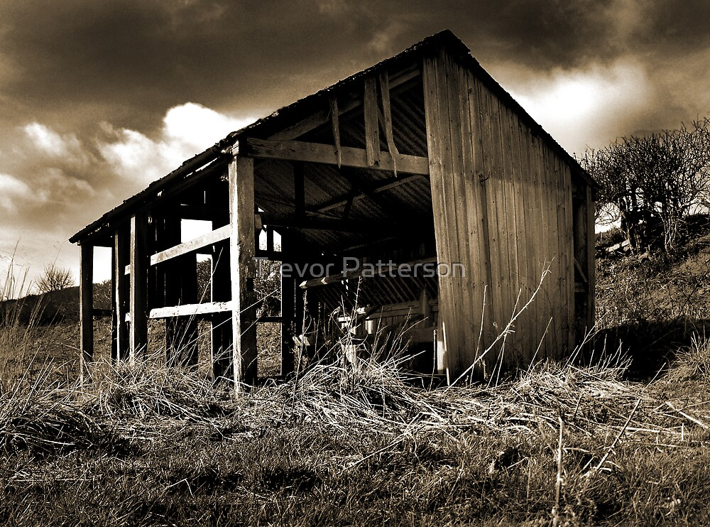 Old Cattle Shed by Trevor Patterson