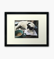 A Hard Day's Work Framed Print