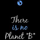 There is no Planet B by pda1986