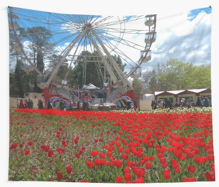 Red Flowers and Big Wheel, Canberra by jeremydwilliams