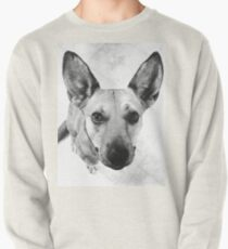 Carolina Gray Pup Pullover