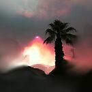 Fire In The Desert by SherriOfPalmSprings Sherri Nicholas-