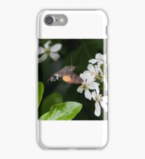 Hummingbird Hawkmoth iPhone Case/Skin