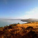Morning Mist by kevin smith  skystudiohawaii