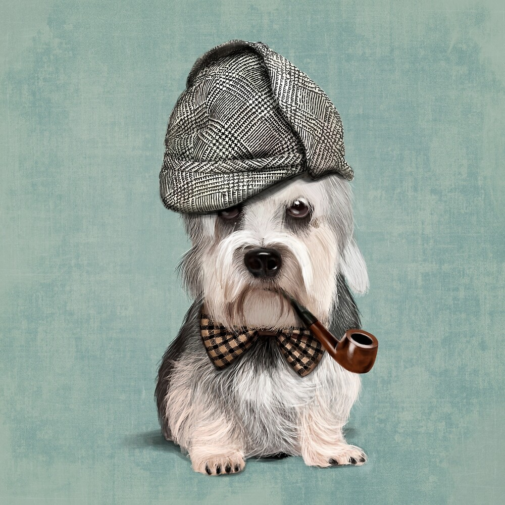 Dandie Dinmont Terrier Detective by Sparafuori