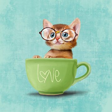 Kitten in a big cup by Sparafuori