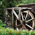 Water-wheel by Hali Madere