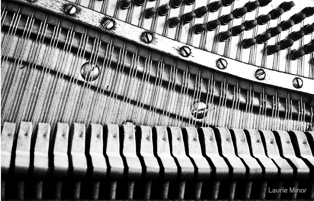 Strings, Hammers & Pegs by Laurie Minor