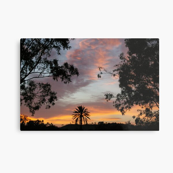 Sunrise Delight II Metal Print