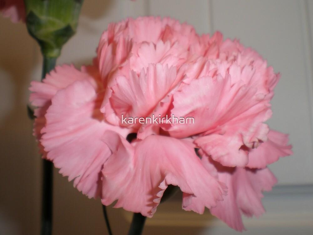 Pink carnation 2 by karenkirkham