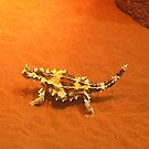 thorny devils by aggieeck