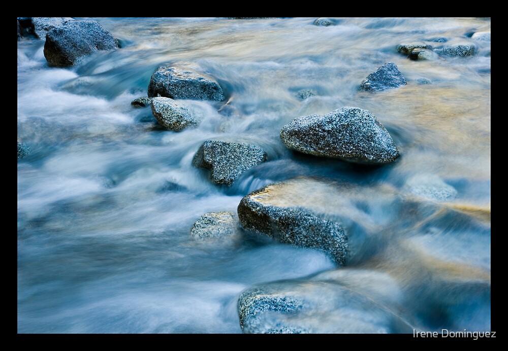 Velvet Waters by Irene Dominguez