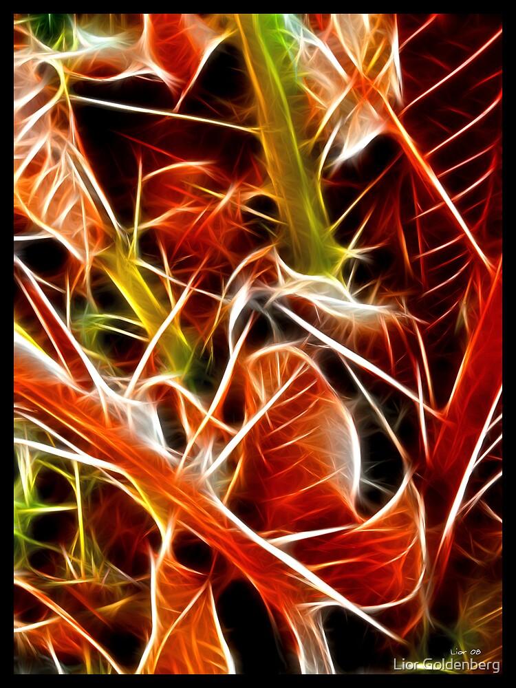 Fractaleaves by Lior Goldenberg