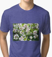 Flowering branches of fruit tree Tri-blend T-Shirt