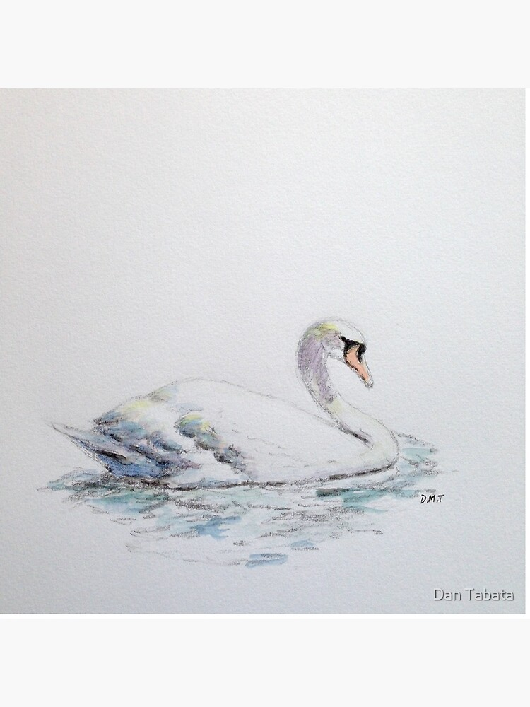 Swan upon the water by dmtab