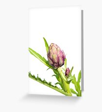 Young Purple Artichokes on Stem (White Background) Greeting Card