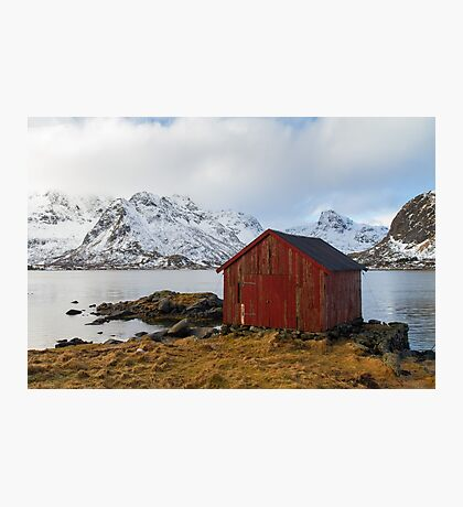 The red shed Photographic Print